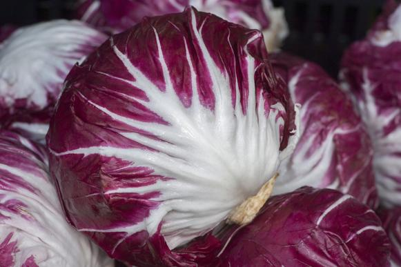 Radicchio grown by Andrea Crawford of Kenter Canyon Farms in Fillmore.