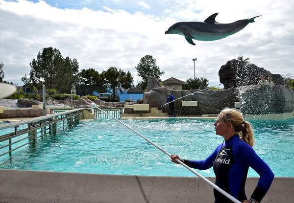 SeaWorld Entertainment Inc., which operates the theme park in San Diego, among others, could raise $540 million in an initial public offering on the New York Stock Exchange.