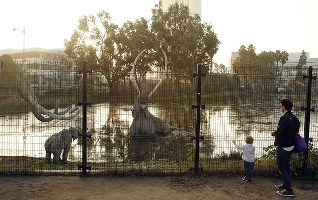 The La Brea Tar Pits sit bubbling along Wilshire, a reminder of the boulevard's primordial significance to Los Angeles. (Luis Sinco / Los Angeles Times)