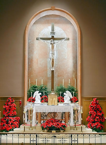 Thirty one poinsettias decorate the altar at St Mary Catholic Church on W. Washington St during the House of Worship Holiday Tour