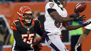 Cincinnati Bengals rookie middle linebacker Vontaze Burfict displayed a knack for annoying the Ravens' offensive players, getting under their skin at least twice Sunday.