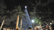 What goes up, must come down – especially if you're a 100-foot Christmas tree in the center of a city.
