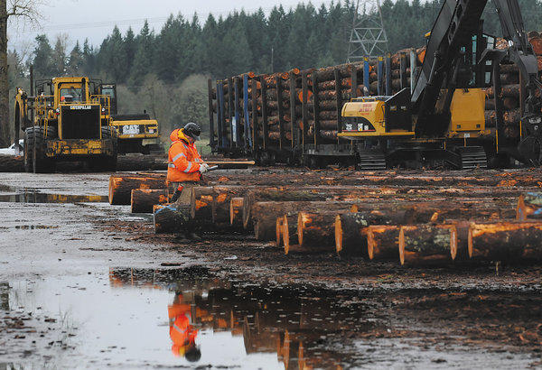 After a late-year rally, lumber futures are expected to tumble in 2013, according to Forest Economic Advisors LLC, a Massachusetts-based consulting firm. Above, a lumber yard in Oregon.