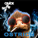 Crack the Sky -- 'Ostrich' (Aluminum Cat)