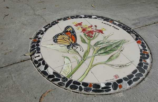 One of several new tiles that have been installed showing the life of a Monarch butterfly at Gibbs Park in Huntington Beach.