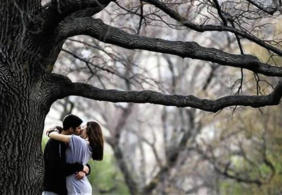 A couple kisses while standing underneath a tree inside Central Park during a warm day in New York