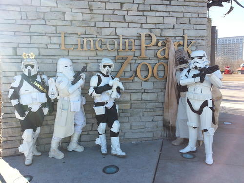 "The troops assemble at Lincoln Park Zoo before heading out to North Avenue Beach for the Star Wars-themed ""Wampa Plunge."""