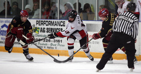 Kyle Haak of the Aberdeen Wings, center, battles for the puck with Jadin Martin, left, and Matt Audette of the Minot Minotauros during the first period of Thursday night's game at the Odde Ice Center in Aberdeen. The Wings lost 2-1 in a shootout after overtime.