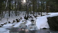 Winter Visit To Enders Falls