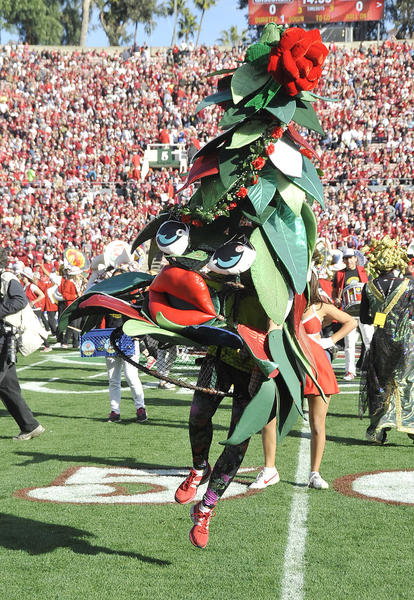 The dancing tree mascot for the Stanford Cardinal kicks it's heals at the beginning of the pre-game performance by the band at the 99th Rose Bowl in Pasadena on Tuesday, January 1, 2013. Sanford beat Wisconsin 20-14 which was the third time in a row Wisconsin had lost the Rose Bowl, and Stanford ended a 40 year stretch since their last win.