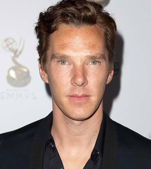 Overheard at 2013 Winter TV Press Tour: Its a big smile and a laugh. Its just been an amazing year -- an embarrassment of riches is the headline.   -- Parades End star Benedict Cumberbatch on his amazing year in 2012