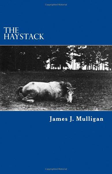James Mulligan, author of 'The Haystack,' will hold a book talk at 6:30 p.m. Jan. 16 at the Northampton Area Public Library.