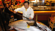 Sushi chain pays record $3,599 per pound for bluefin tuna