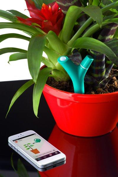 The Flower Power device from Parrot transmits advisories on care and condition from the source: the plant.