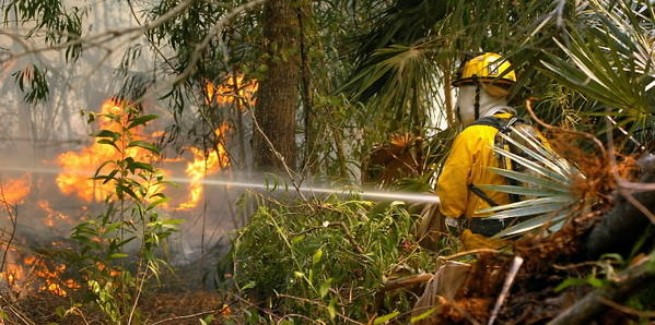 Abnormally dry conditions have increased the risk of wildfire in South Florida.