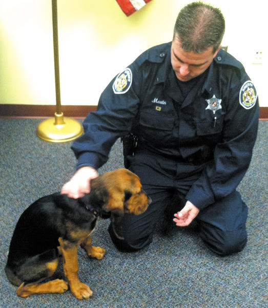 Washington County Sheriff's Deputy 1st Class John Martin works with his canine Bess, a bloodhound recently donated to the Sheriff's Office.