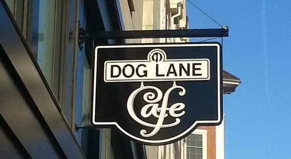 Dog Lane Cafe, Storrs
