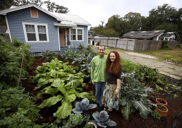 Jason and Jennifer Helvenston stand in their garden that is also their front yard at their Orlando home on January 8, 2013. The couple has been at odds with the city over the garden. The city thinks it's a code violation and they want to keep it.