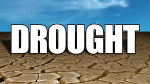 Drought leads to disaster declaration in nearly half of Missouri