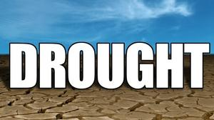 Drought leads to disaster declaration for Missouri, Arkansas counties