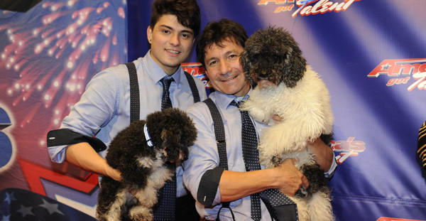 "Olate Dogs won the 2012 ""America's Got Talent."""