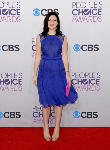 People's Choice Awards 2013: The Red Carpet: Casey Wilson