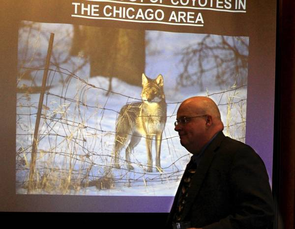 "Chris Anchor, a Cook County Forest Preserve District wildlife biologist, spoke about ""Research on Coyotes: Learn the Facts and Dispel the Myths"" at Wednesday's seminar in Lisle."