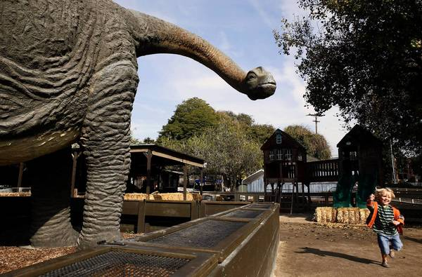 The dinosaur replica at Zoomars Petting Zoo in San Juan Capistrano stands 13 feet tall.