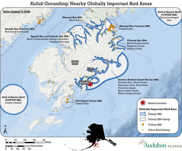Important wildlife areas near Kulluk site