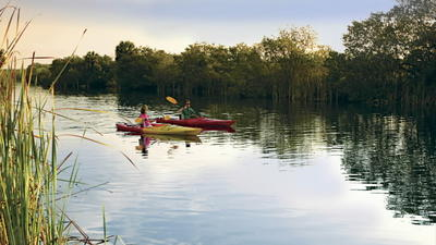 The Frugal Traveler: Enjoy an eco-getaway along Florida's Paradise Coast