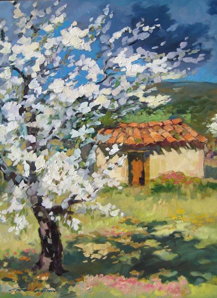 """Maria Bertran's """"Cherry Tree By The Cabanon."""""""