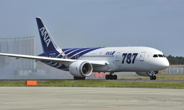 A Boeing 787 Dreamliner jet operated by All Nippon Airways. U.S. regulators launched a review of the plane Friday.