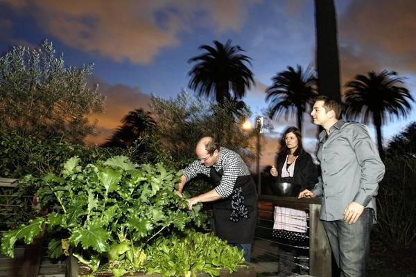Los Angeles Times Food Editor Russ Parsons (left), in his garden with Carter Calhoun (right) and his fiancee Meghan Garvey (middle) at Parsons' Long Beach home picking ingredients.
