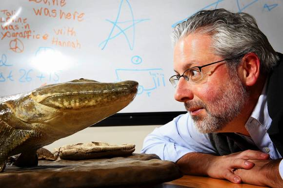 Professor Neil Shubin