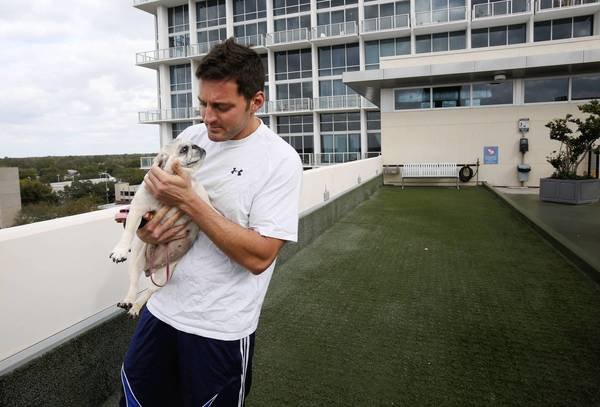 Ian Jones nuzzels his dog Mia on the 7th floor dog walking area. The Vue condominiums has started requiring DNA testing of residents' pets so they can identify which dogs' owners are not picking up after them.