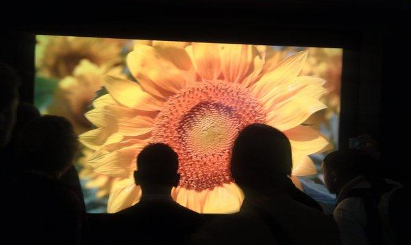Attendees inspect Sharp's 8K TV prototype at the Consumer Electronics Show in Las Vegas.