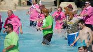 Aquatica, SeaWorld's water park, again will host Polar Plunge, a fundraiser for Special Olympics Florida that invites participants into the intentionally cooled waters of its wave pool.