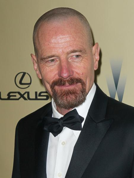"""Breaking Bad"" actor Bryan Cranston."