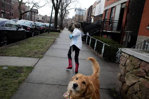 Cassidy, 9, walks Starla around her neighborhood. She is part of the Free Range Kids Club that can go about without parental supervision.