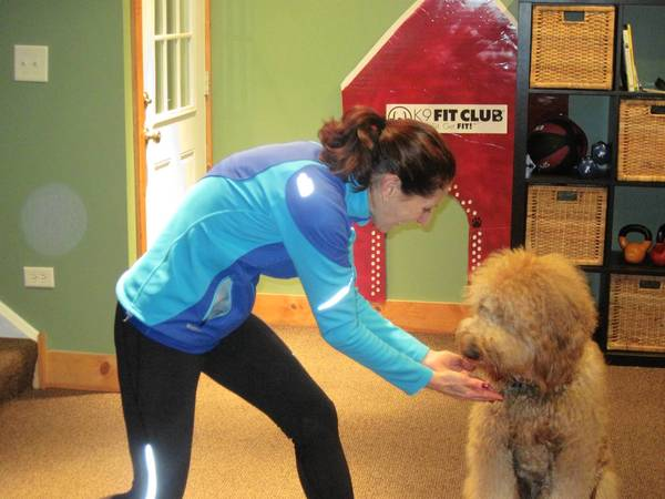 Nancy Watkins of Hinsdale did a Tai Chi class with her dog, Goldy.