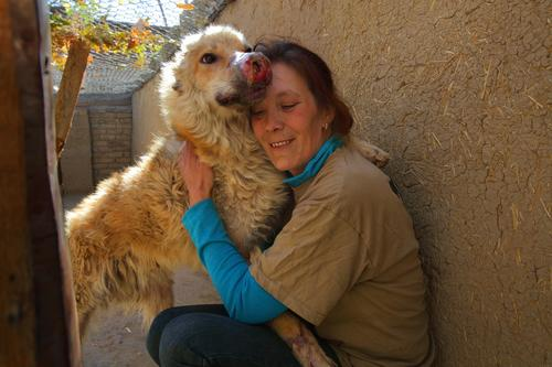 Louise Hastie, a former British soldier, runs Nowzad, a charity that reunites Afghan pets with Western soldiers and contractors who can't bear to leave them behind. All of the dogs adopted are strays, like Joey, who suffers from sores on his nose and paws, but is getting much better, according to Hastie, who has become very close to the dog.