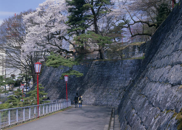 A general view of Morioka Castle Park and cherry blossoms