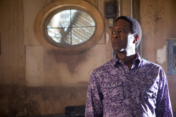 "Clarke Peters stars in David Simon's HBO series ""Treme"" as Albert ""Big Chief"" Lambreaux. He has also appeared in the CBS series ""Person of Interest."""
