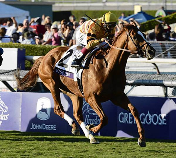 Wise Dan, sired at Dana Point Farm in Lenhartsville, is one of two Pennsylvania-sired finalists for Horse of the Year to be presented Saturday night at the Eclipse Awrds in Florida.