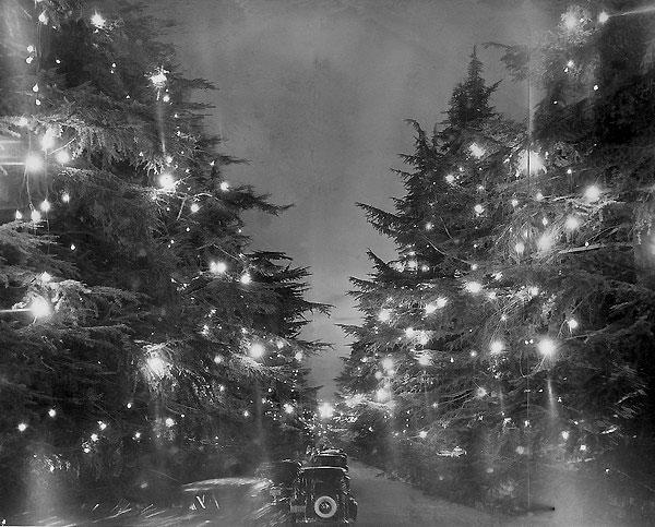 Christmas Tree Lane, circa 1938.