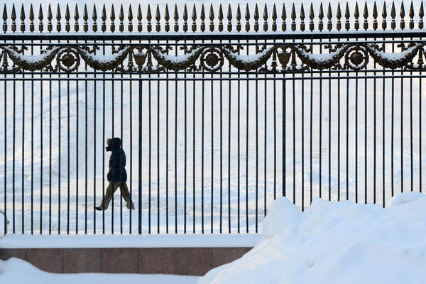 A man walks past snowdrifts behind the fence of the Gorky Park in central Moscow, on January 21, 2013. Unusually heavy snowfall of almost 50 cm (20 inches) in Moscow caused traffic jams, but did not affect flights at city airports, which are well equipped for snowstorms. The temperatures in the Russian capital dropped to 12C (9 F), but due to high humidity and wind, weather experts said it would feel more like - 21C (-6 F).