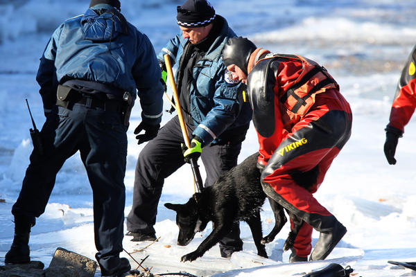 A dog is rescued from a frozen pond at Jackson Park Yacht Club on Chicago's South Side.