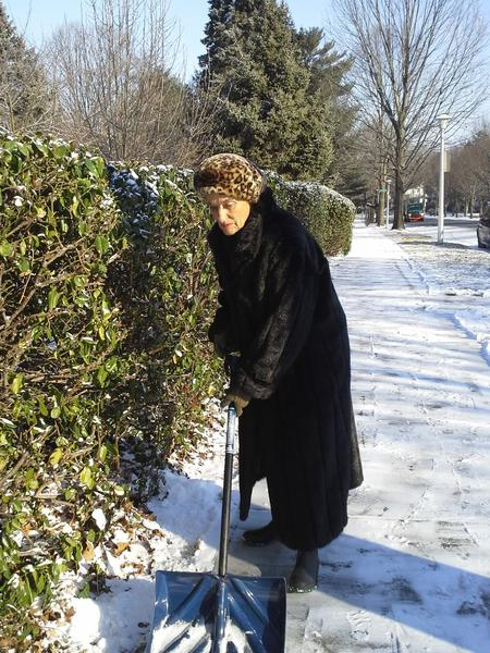 Bonye Norton shovels the sidewalk outsider her house in the 4800 block of Roland Avenue in Roland Park this morning.