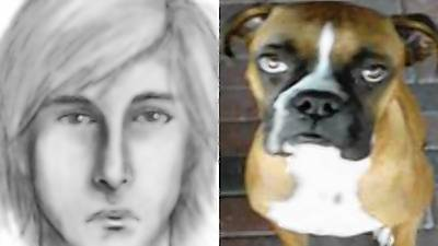 Orlando police are looking for this man, who is suspected of killing Wilson, a 2-year-old boxer, during a string of buglaries Wednesday.
