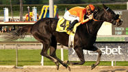 Teddy's Promise won the $250,000 Santa Monica Stakes by three lengths at Santa Anita on Saturday, a year after finishing fifth in the Grade II race.